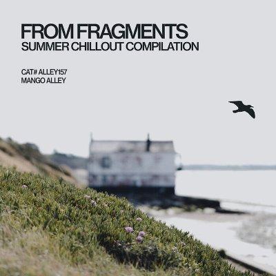 VA — From Fragments