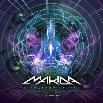 Makida – Vibratory Levels