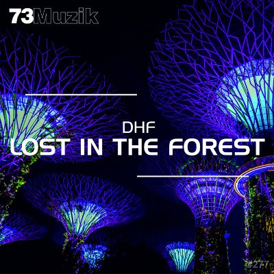 DHF — Lost In The Forest