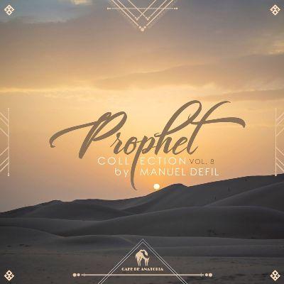 VA — Prophet Collection, Vol. 8 (by Manuel Defil)