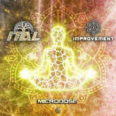 Ital & Improvement — Microdose
