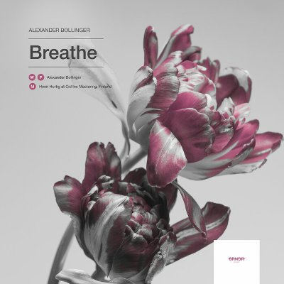 Alexander Bollinger — Breathe