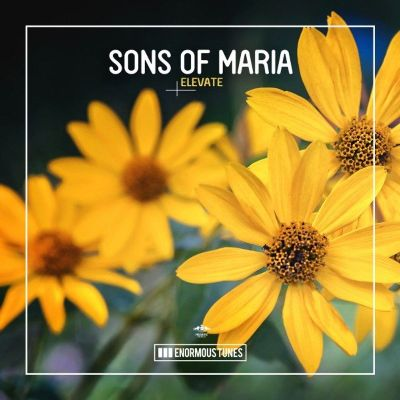 Sons Of Maria — Elevate