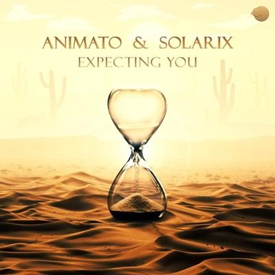 Animato & Solarix — Expecting You