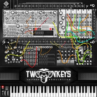 Two Monkeys – Voltage Regulation