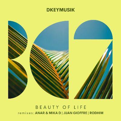 Dkeymusik – Beauty of Life