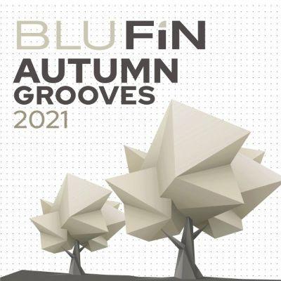 VA — BluFin: Autumn Grooves 2021